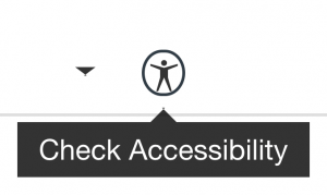 Check Accessibility button